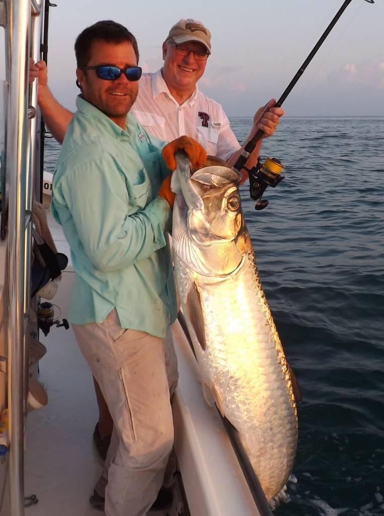 Tampa tarpon fishing captain matt fishing charters for Tarpon fishing tampa