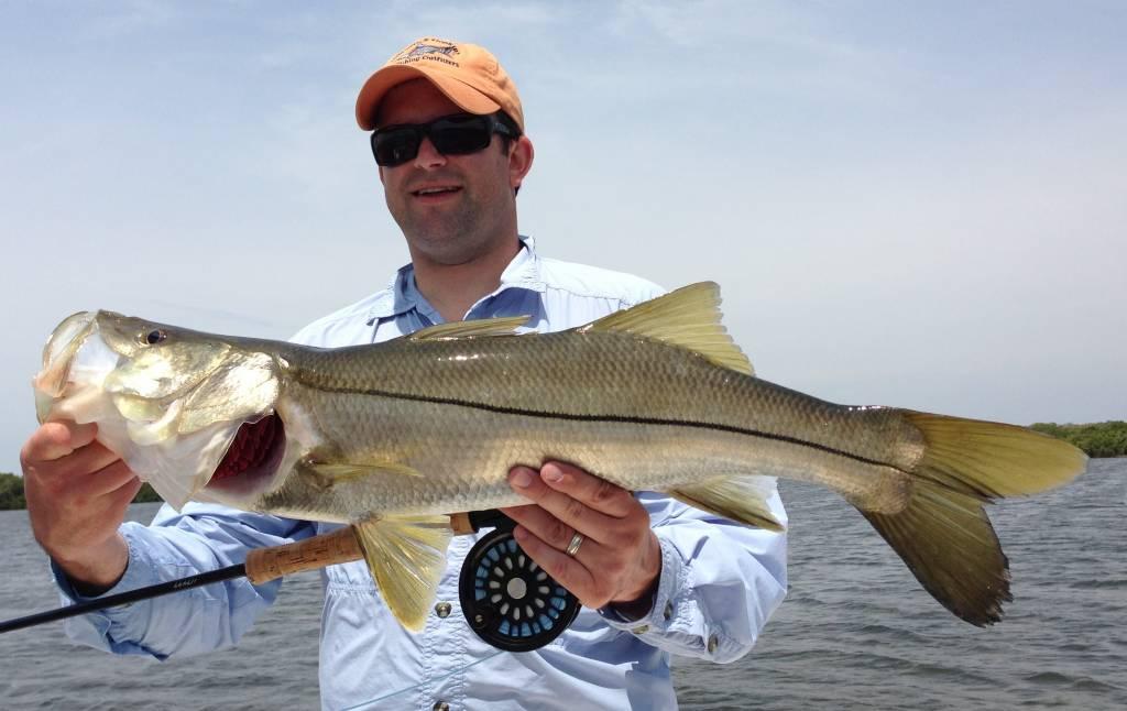 Tampa fly fishing captain matt fishing charters for Tampa fly fishing