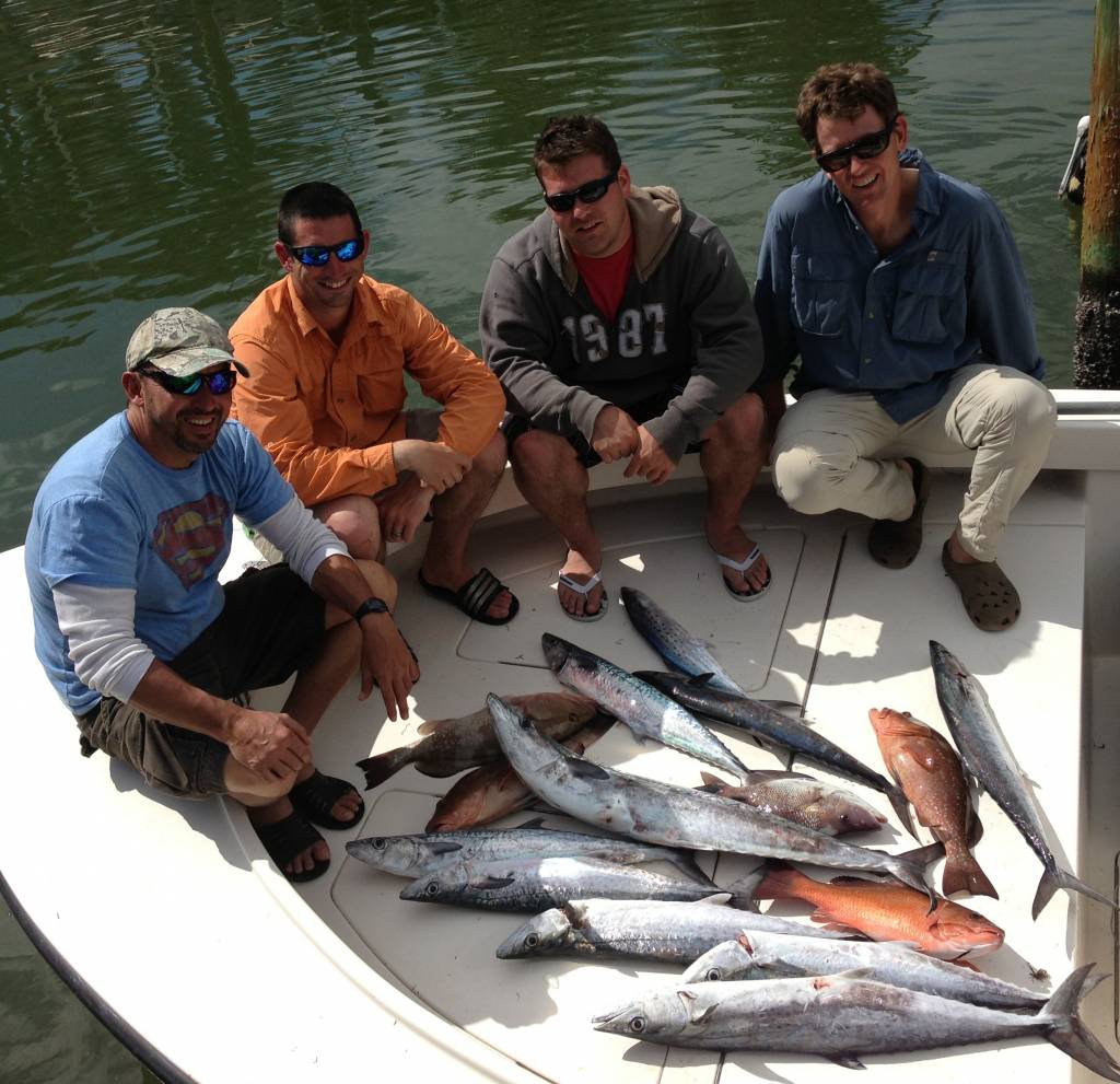 Tampa Bay Redfish schools
