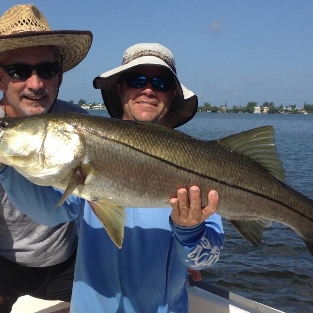 b65d280d500b0 Tampa Bay Fish Species - Captain Matt Fishing Charters