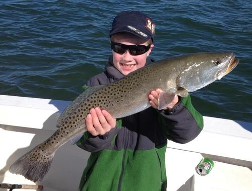 Tampa bay fishing tampa bay feb 2 fishing report for Tampa fly fishing