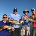 Anna Maria Island fishing report