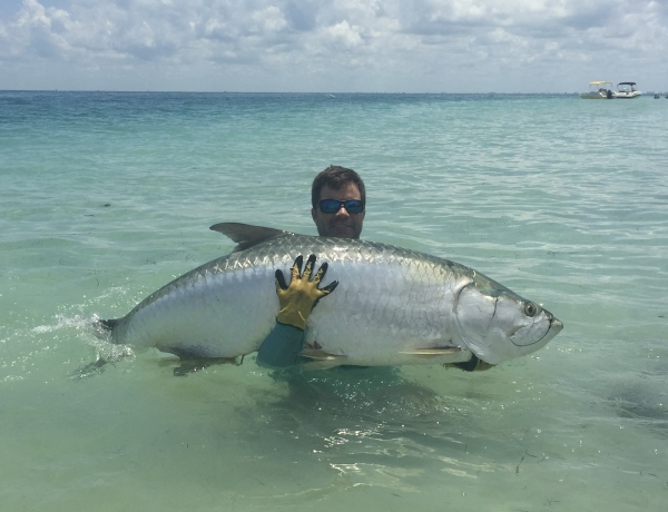 Tampa bay fishing reports captain matt fishing charters for Tampa bay fishing report
