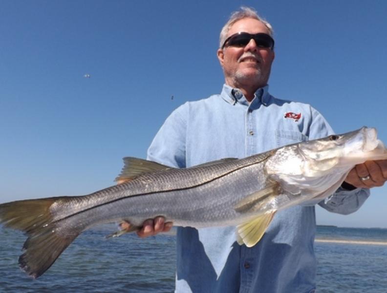 Tampa bay fishing anna maria february fishing report for Fishing report tampa bay
