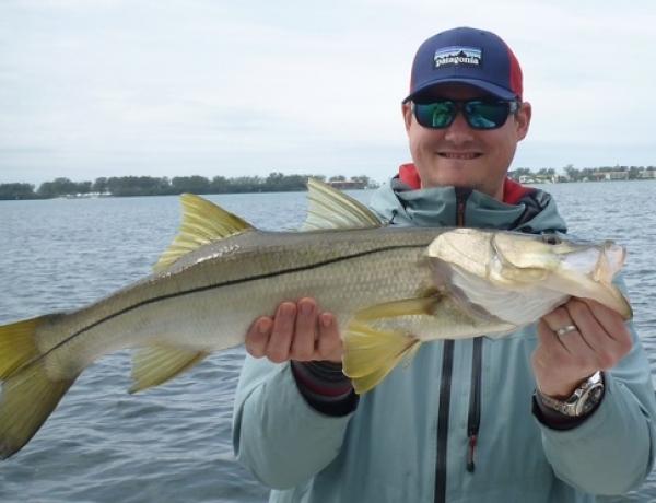 Tampa bay fishing reports captain matt fishing charters for Tampa bay fishing reports