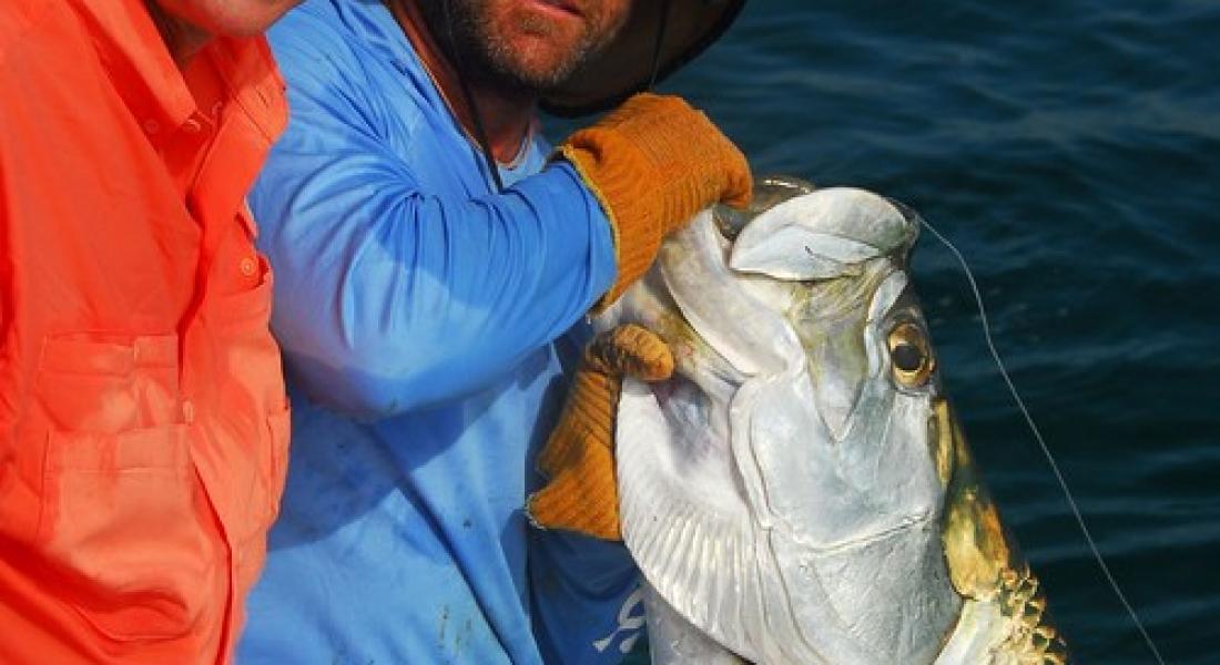 Tampa bay fishing tampa bay anna maria island fishing for Anna maria island fishing report